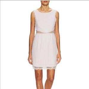 BCBGMAXAZRIA Grey Dress w/ lace